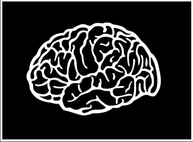 Comunicación e inteligencia, cuanto más colectivas, mejor