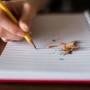 Errores y carencias como fuente de aprendizaje en comunicación